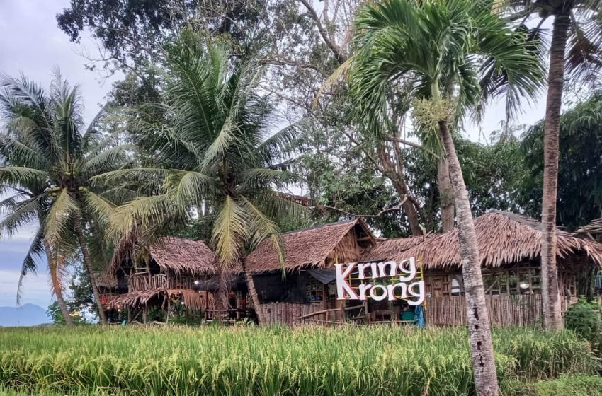 Saung Kringkrong Pringsewu, Tempat Makan di Tengah Kampung Kecil Ditemani Semilir Angin dan Persawahan