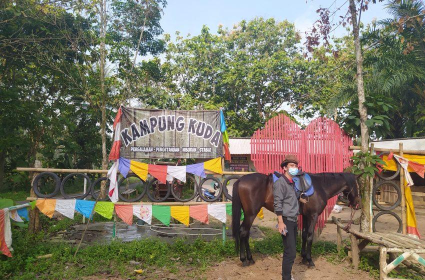 Kampung Kuda Lampung Selatan: Asyiknya Berwisata Sekaligus Olahraga Berkuda
