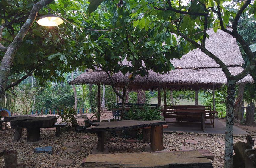 Taman Fosil Lampung Selatan, Wisata Keluarga Berkonsep Fosil Kayu dan Mengusung Kearifan Lokal Pedesaan