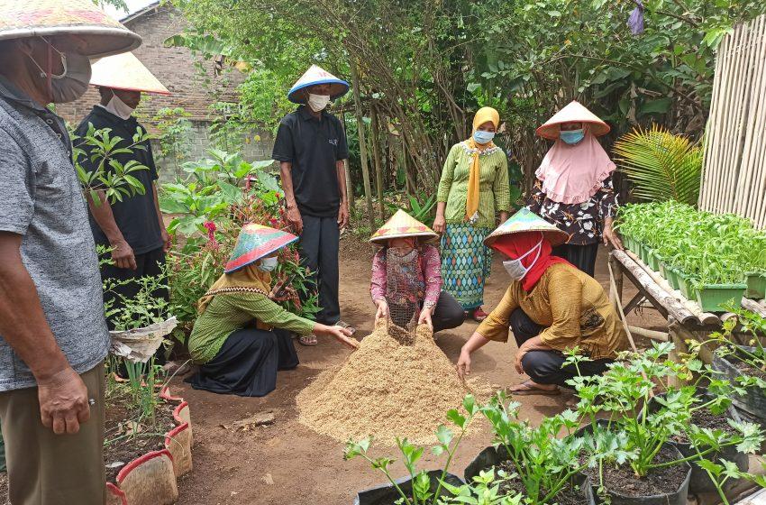 Berwisata, Belajar Bertani Hingga Kulineran di Kampung Eduwisata Liman Benawi Berseri