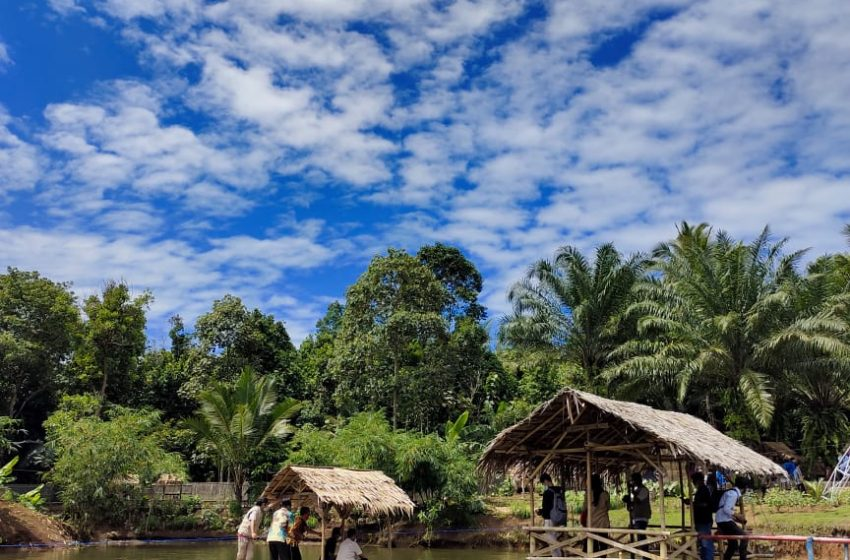 Saung Cempedak, Pringsewu: Menikmati Wisata Alam dan Kuliner khas Lampung, Biaya Masuk Cuma Rp10 ribu