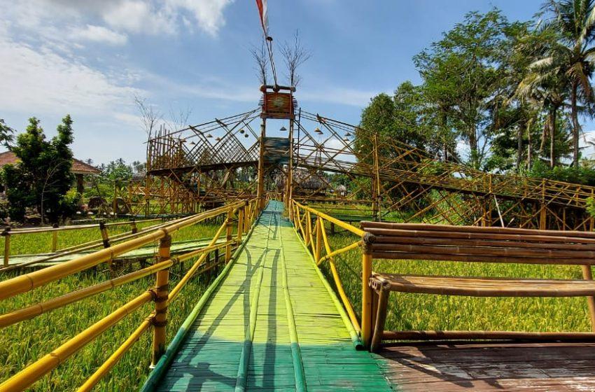 Taman Bamboe Koening: Spot Wisata di Tengah Kebun dan Sawah Dilengkapi Cafe hingga Kolam Renang